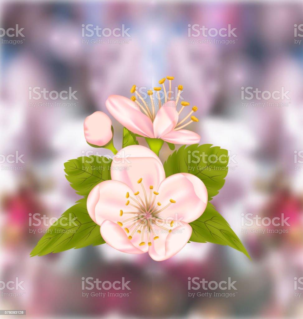 Cherry Blossom, Blur Nature Background vector art illustration