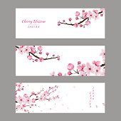 cherry blossom collection