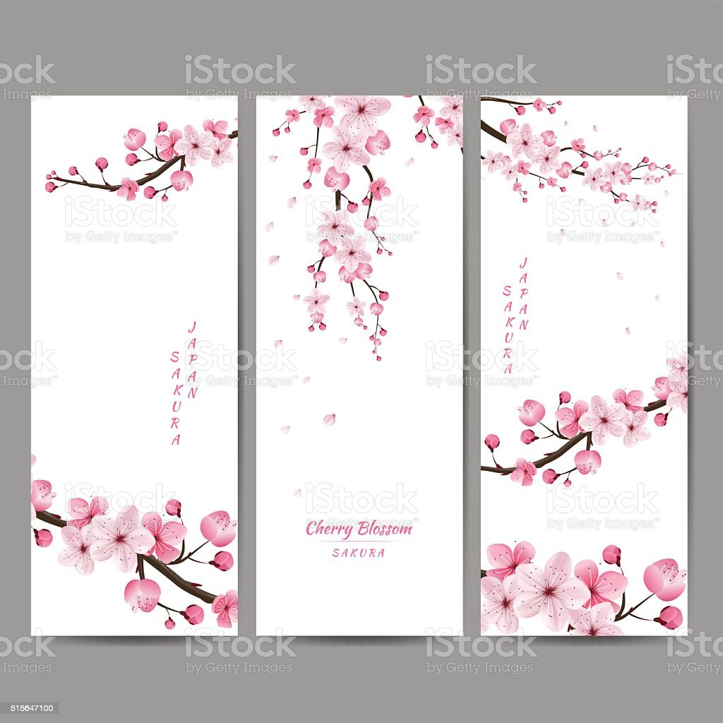 cherry blossom collection vector art illustration
