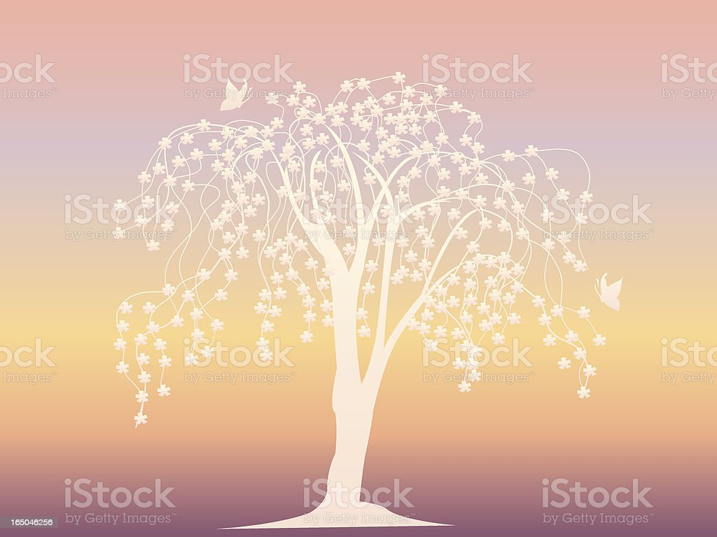Cherry Blossom Silhouette Series royalty-free stock vector art