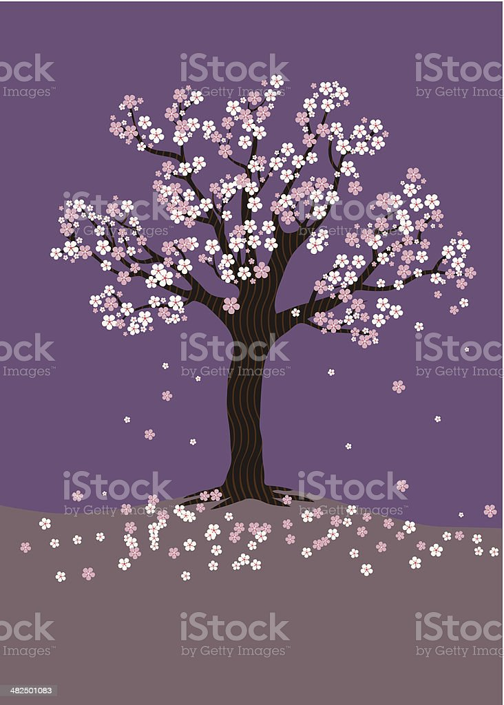 Cherry Blossom Tree on a purple background vector art illustration