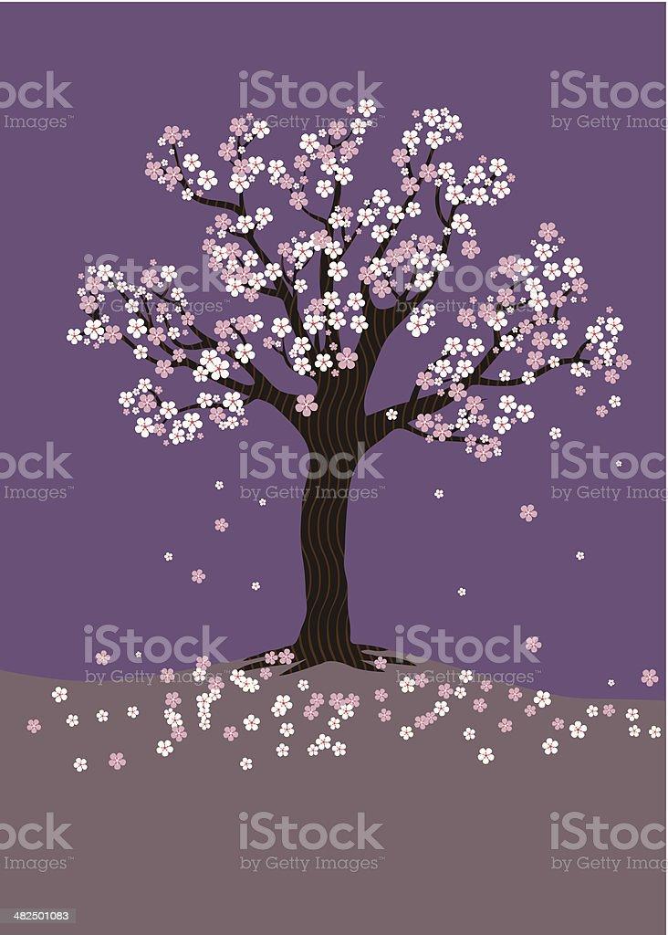 Cherry Blossom Tree on a purple background vector art illustration