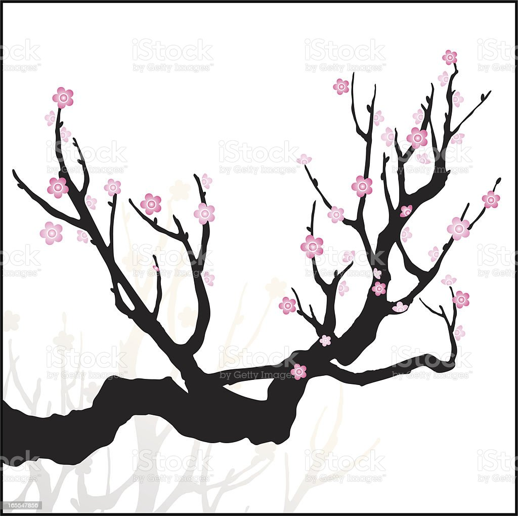 Cherry Blossom royalty-free stock vector art