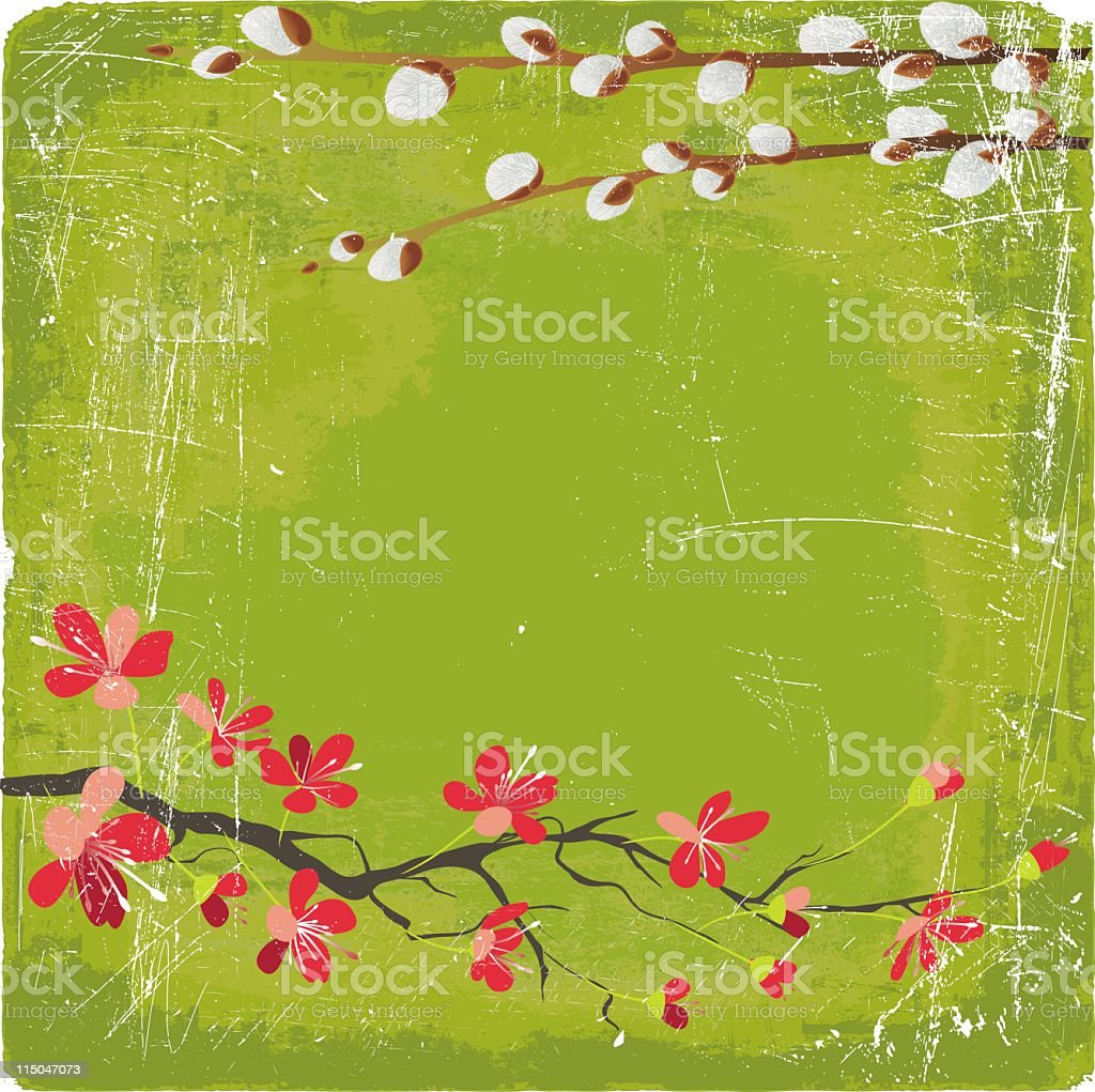 Cherry Blossoms and Pussywillow vector art illustration