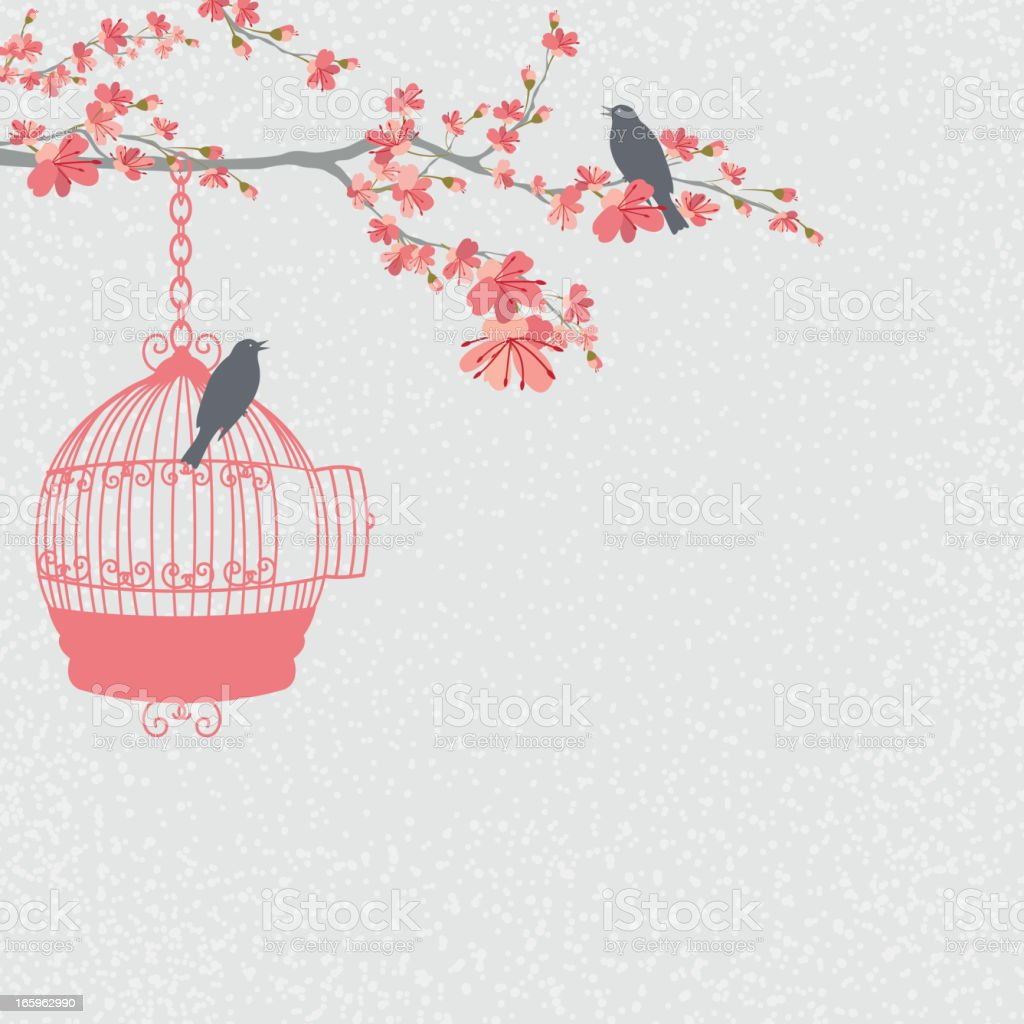 Cherry Blossoms Branch and Birds royalty-free stock vector art