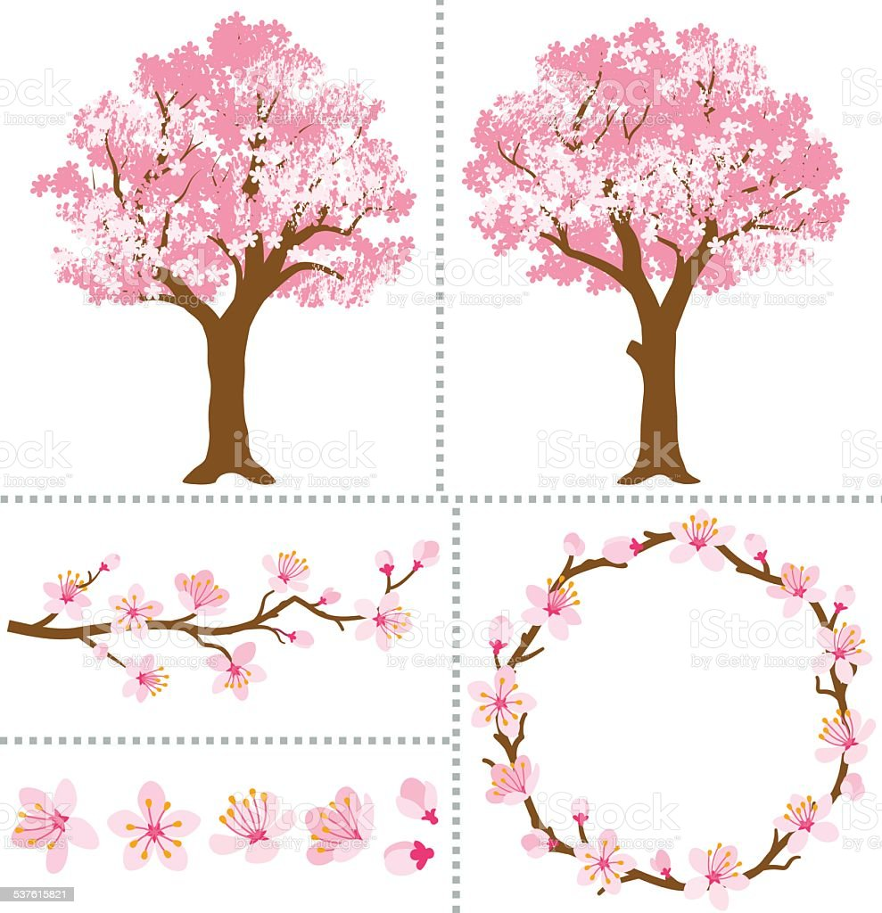 Cherry Blossoms for Design Elements vector art illustration