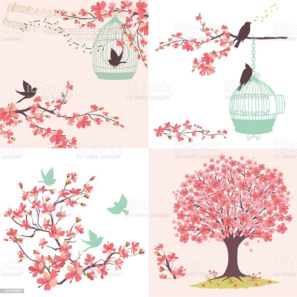 Cherry Blossoms Sakura And Birds Ornaments Set vector art illustration