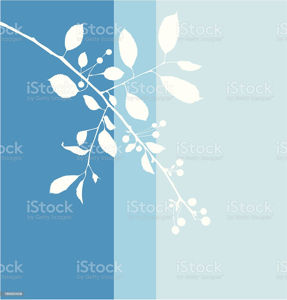 Cherry branch in blue royalty-free stock vector art