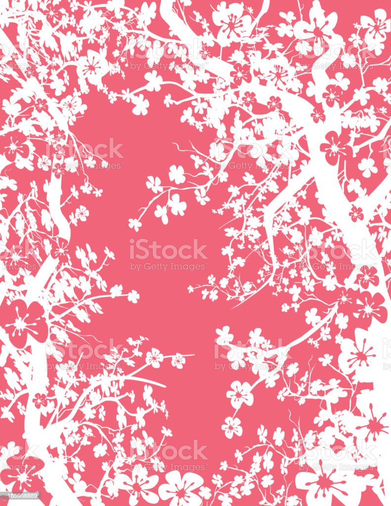 Cherry Branches On Pink vector art illustration