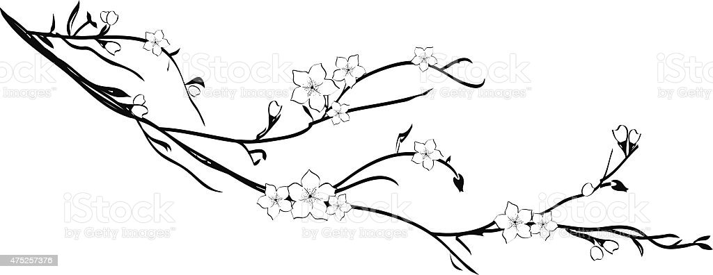 cherry tree branch silhouette stock vector art 475257376
