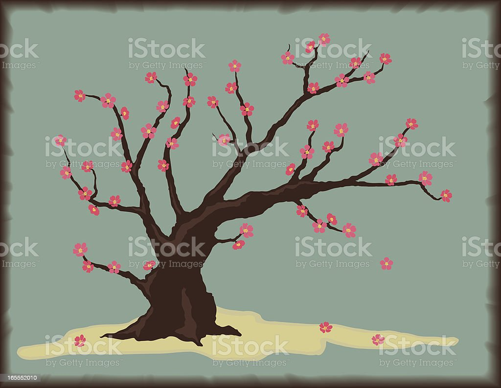 Cherry Tree with Blossoms royalty-free stock vector art