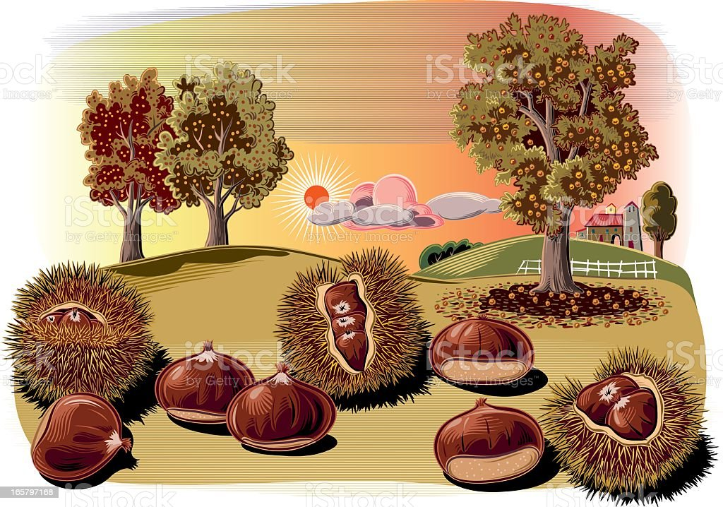 chestnut curls and trees vector art illustration