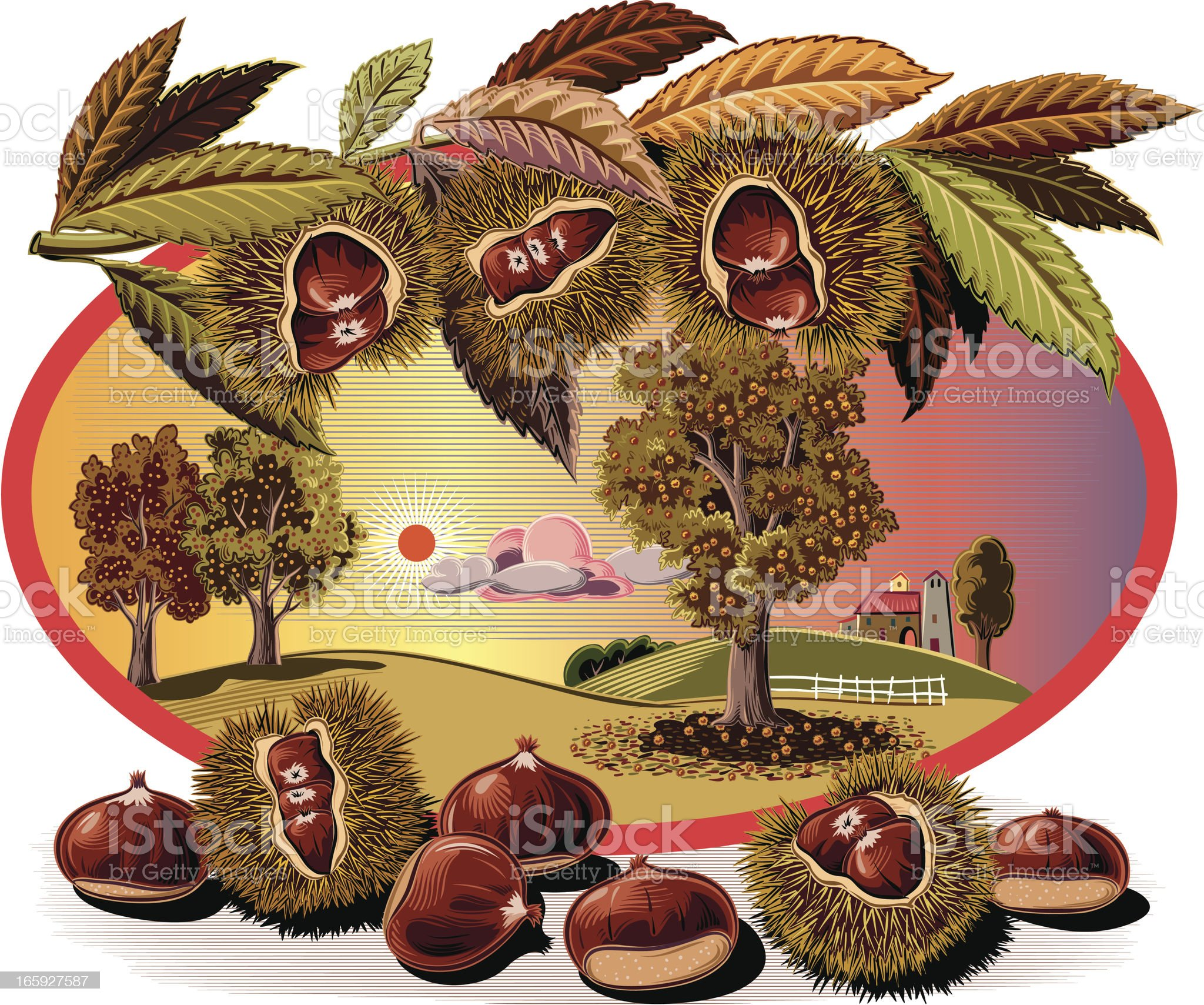 chestnut tree in oval frame royalty-free stock vector art