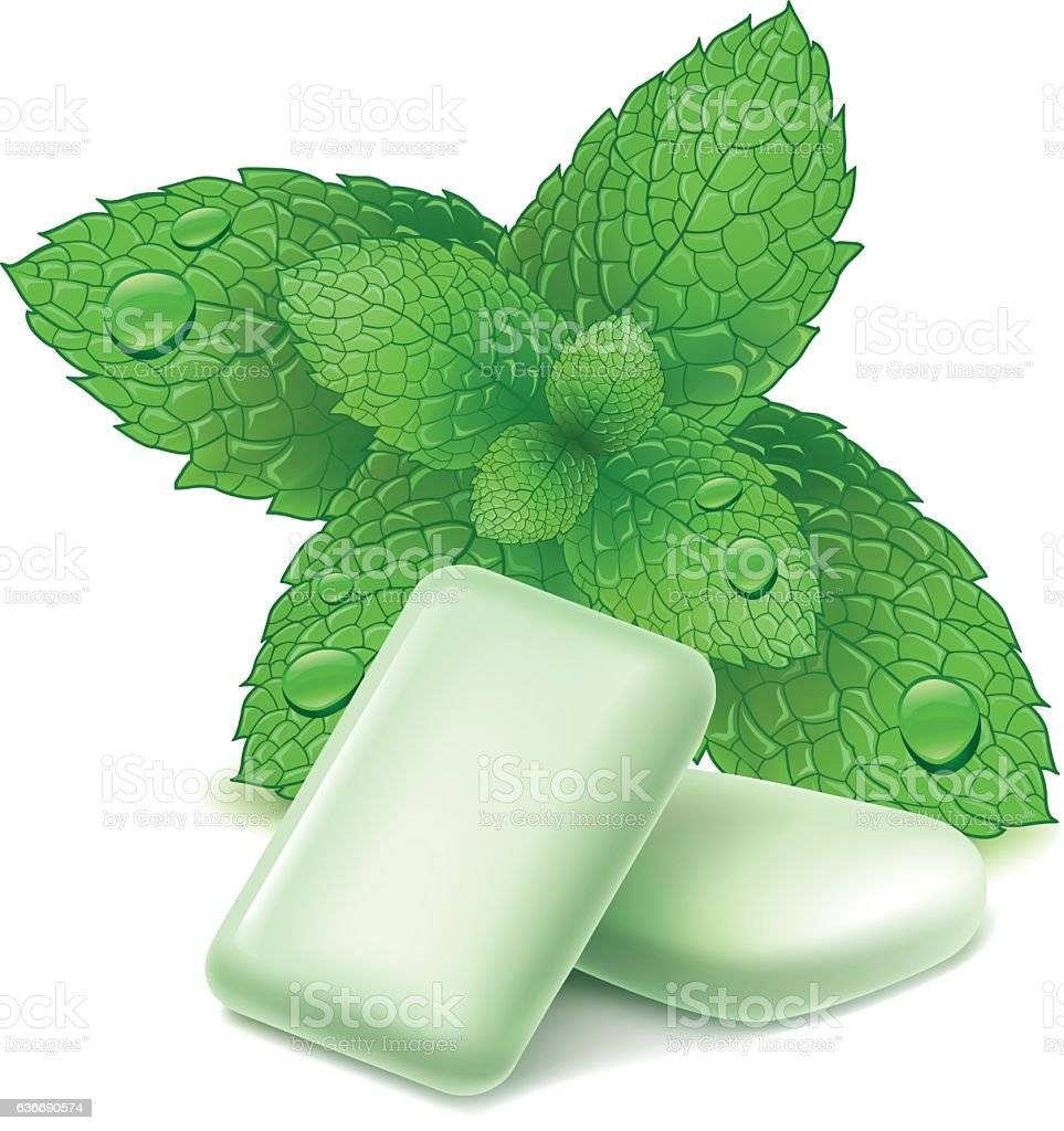 chewing gum with fresh mint leaves vector art illustration