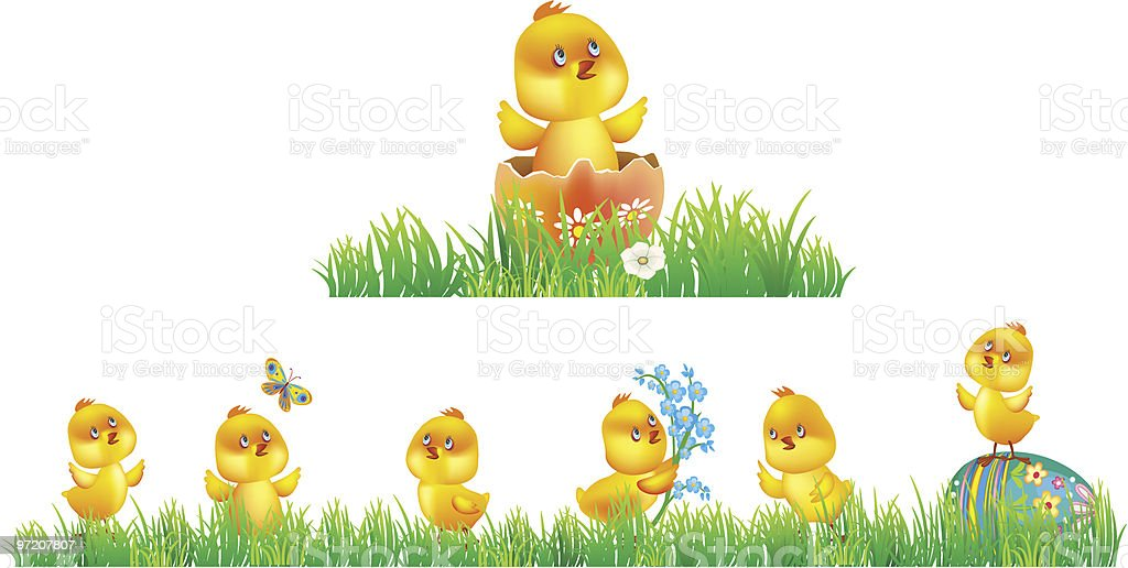 Chicken in grass vector art illustration
