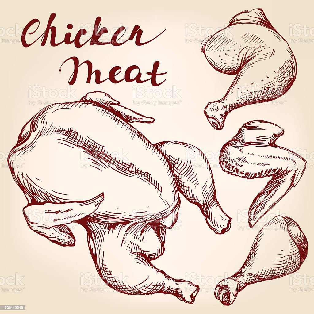 Chicken meat set hand drawn vector llustration realistic sketch, the vector art illustration