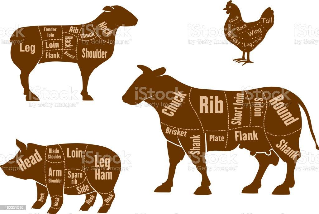 Chicken, pork, beef and lamb meat cuts scheme vector art illustration