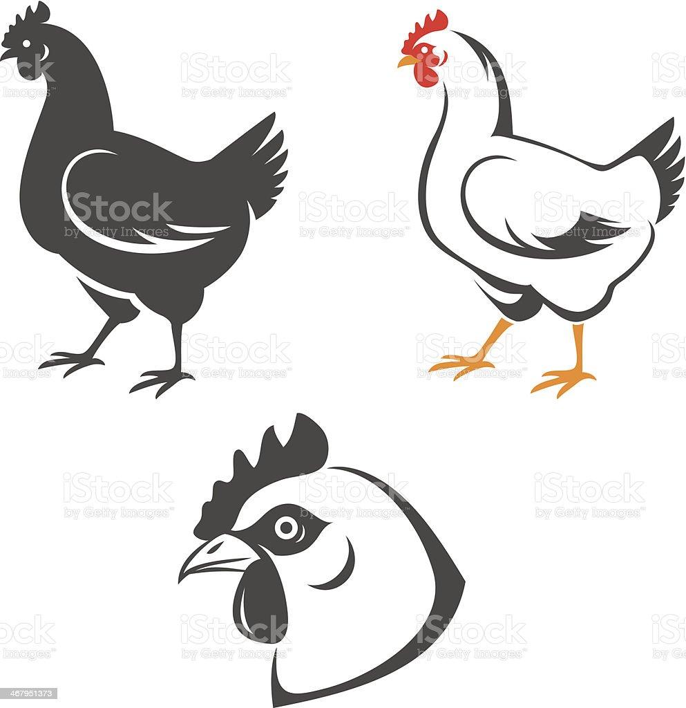 Chicken vector art illustration