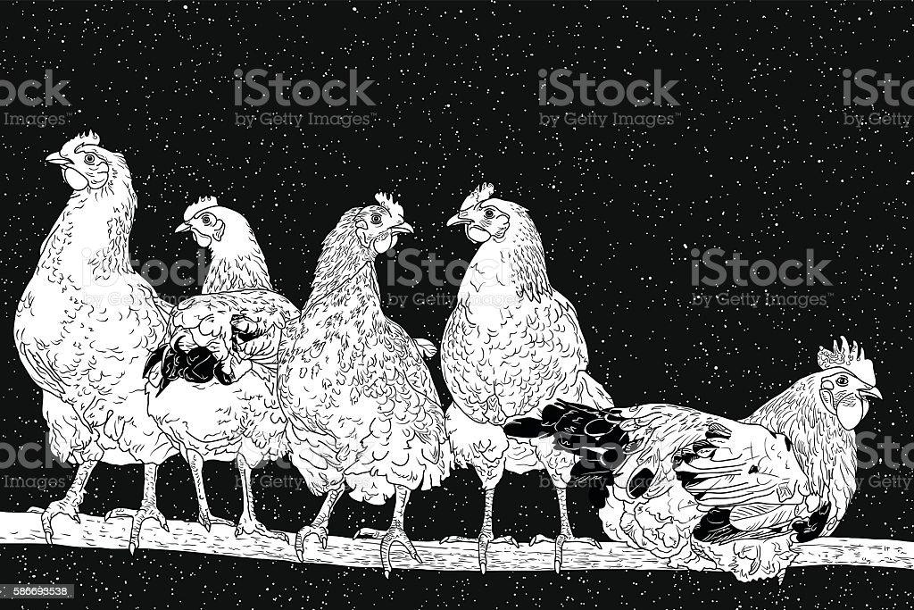 Chickens on perch vector art illustration
