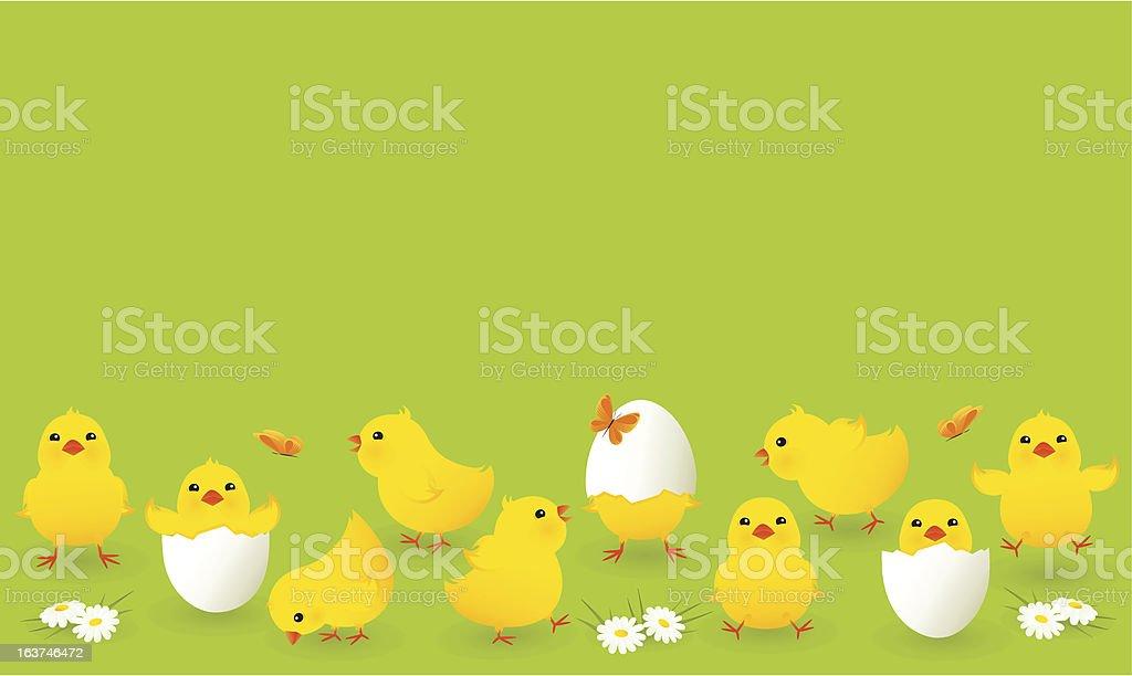 Chickens vector art illustration