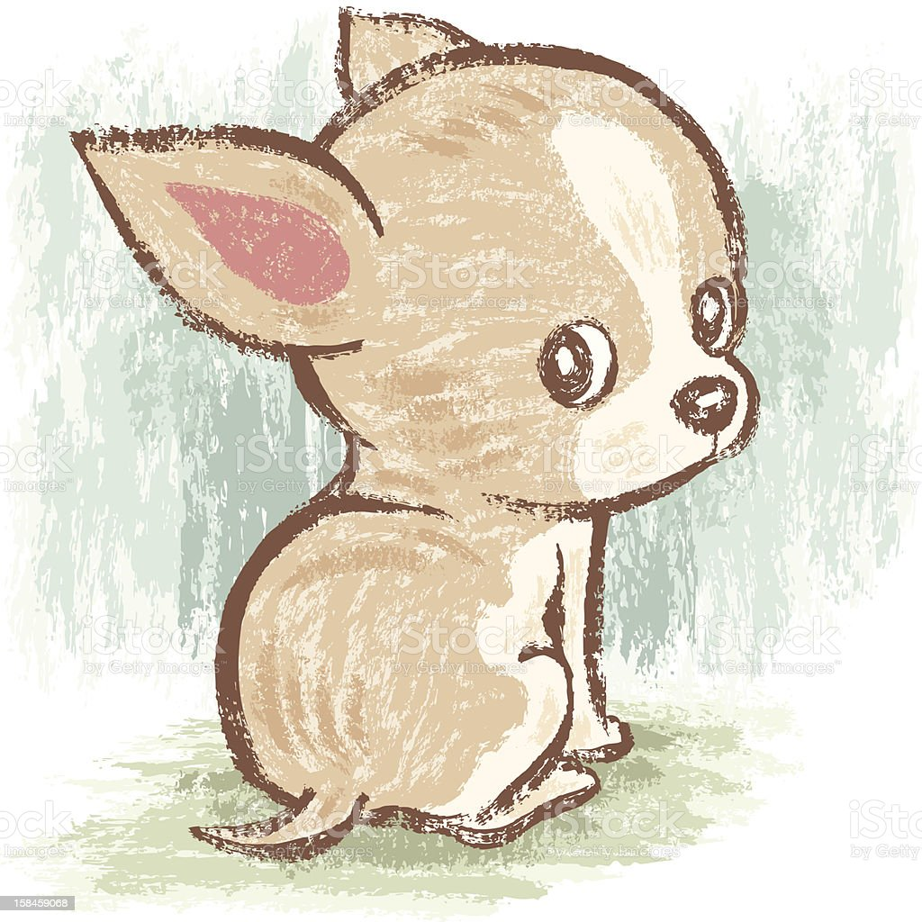 how to draw a long haired chihuahua step by step