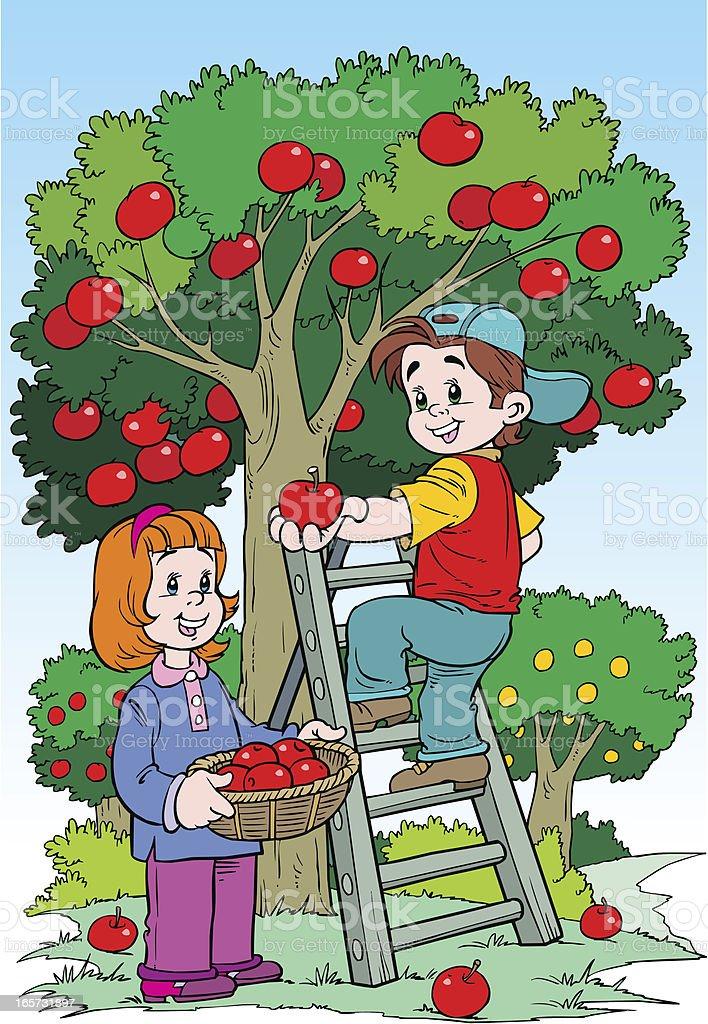Children in the orchard vector art illustration