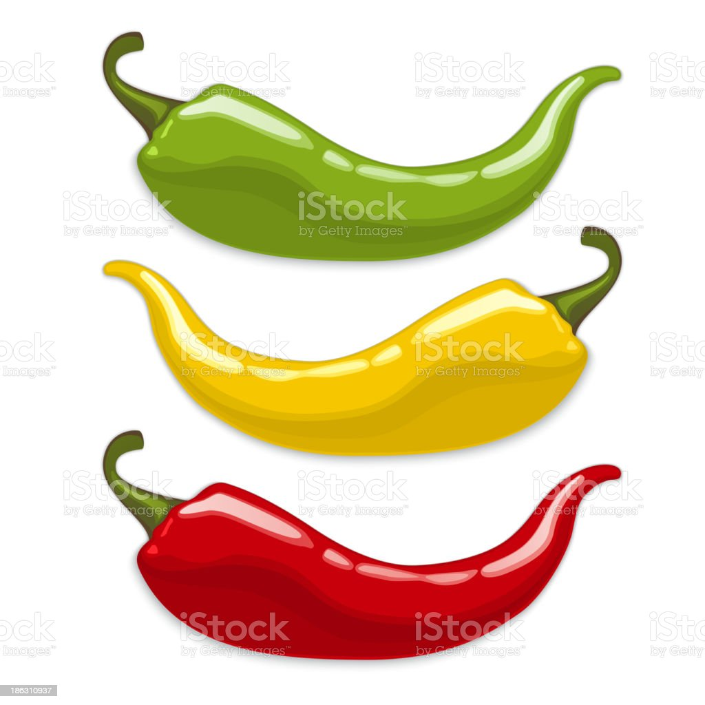 Chili peppers. Isolated vector vector art illustration
