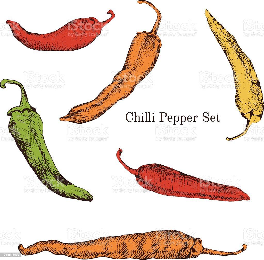 Chilli peppers color sketches set vector art illustration