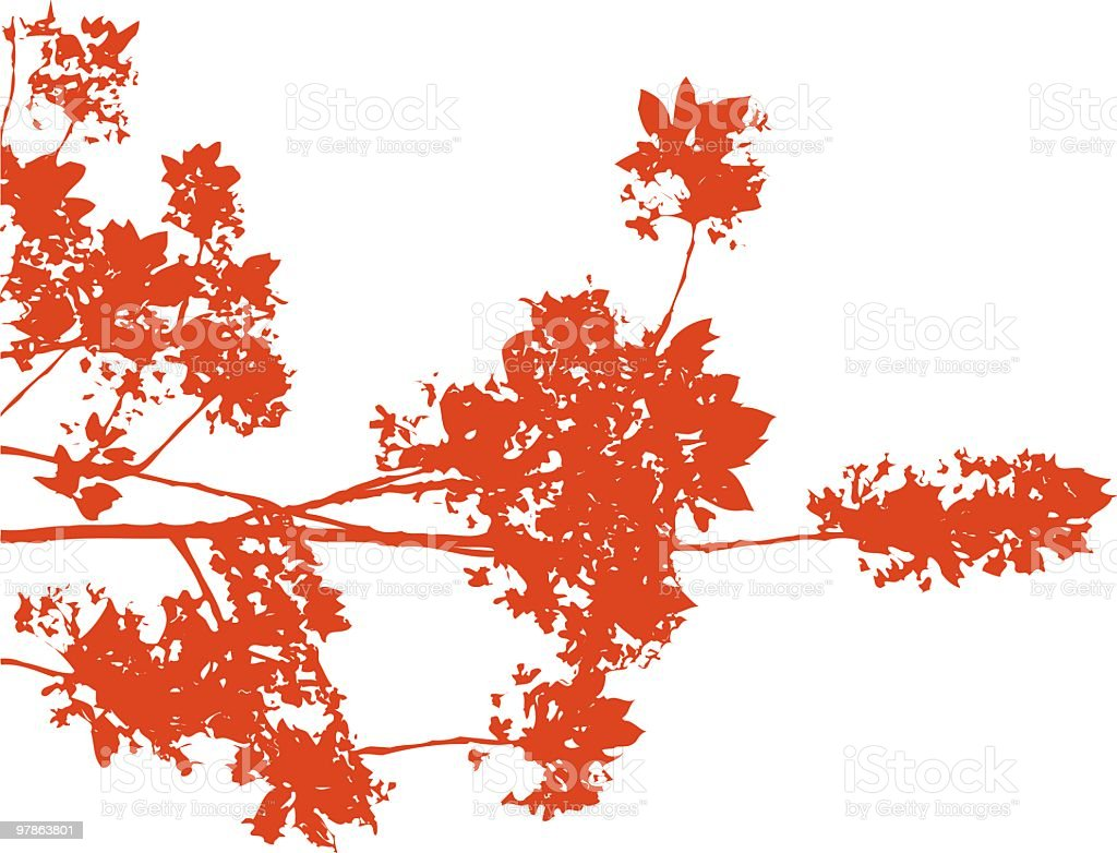 Chinese Blossom - vector royalty-free stock vector art