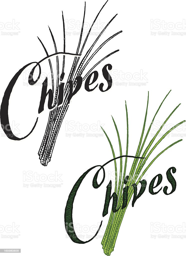 Chives with Text royalty-free stock vector art