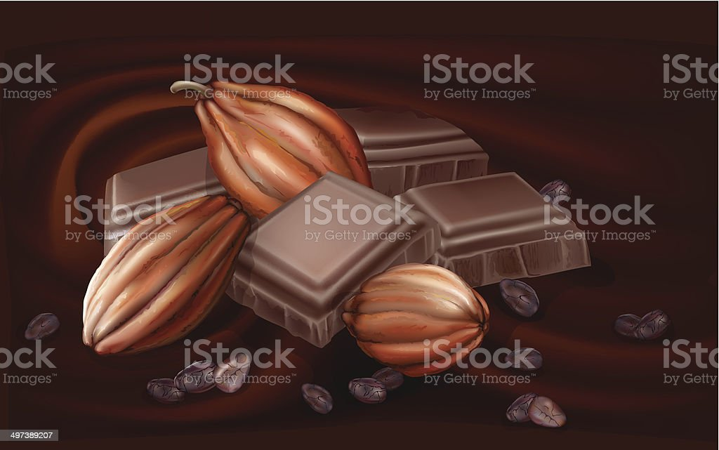 chocolate and cacao pods vector art illustration
