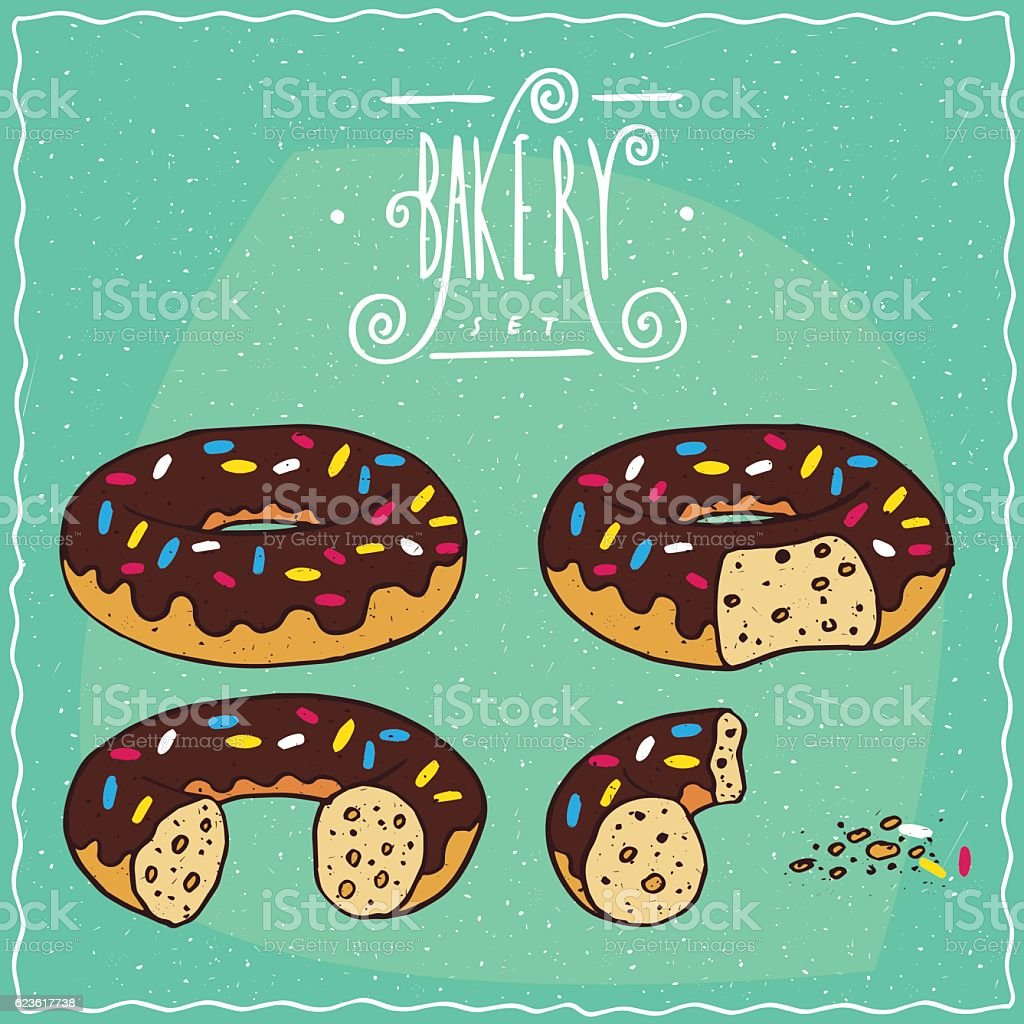 Chocolate donuts in different stages of eating vector art illustration