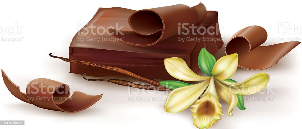 Chocolate with vanilla flover vector art illustration