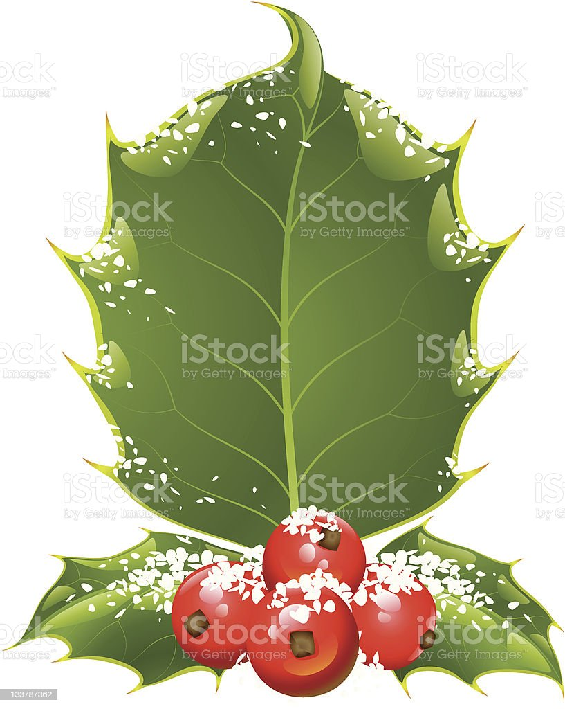 Christmas and New Year background. Vector holly frame royalty-free stock vector art