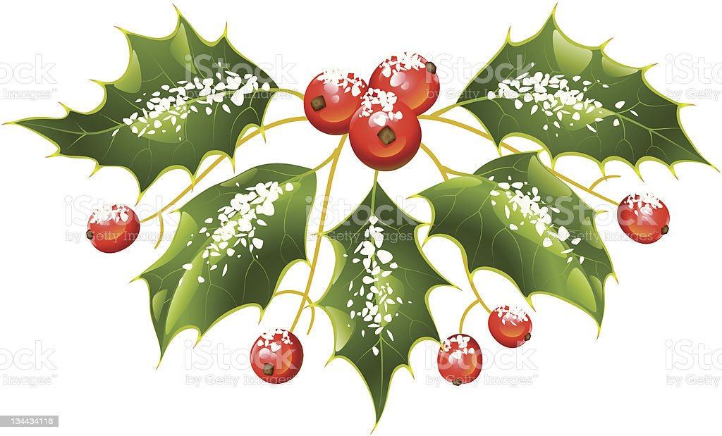 Christmas and New Year Vector holly decoration royalty-free stock vector art