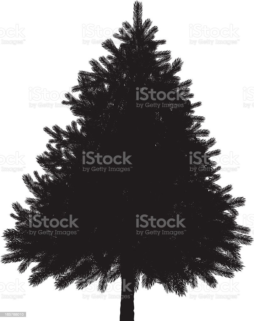Christmas Evergreen Tree Black Silhouette Isolated on White royalty-free stock vector art