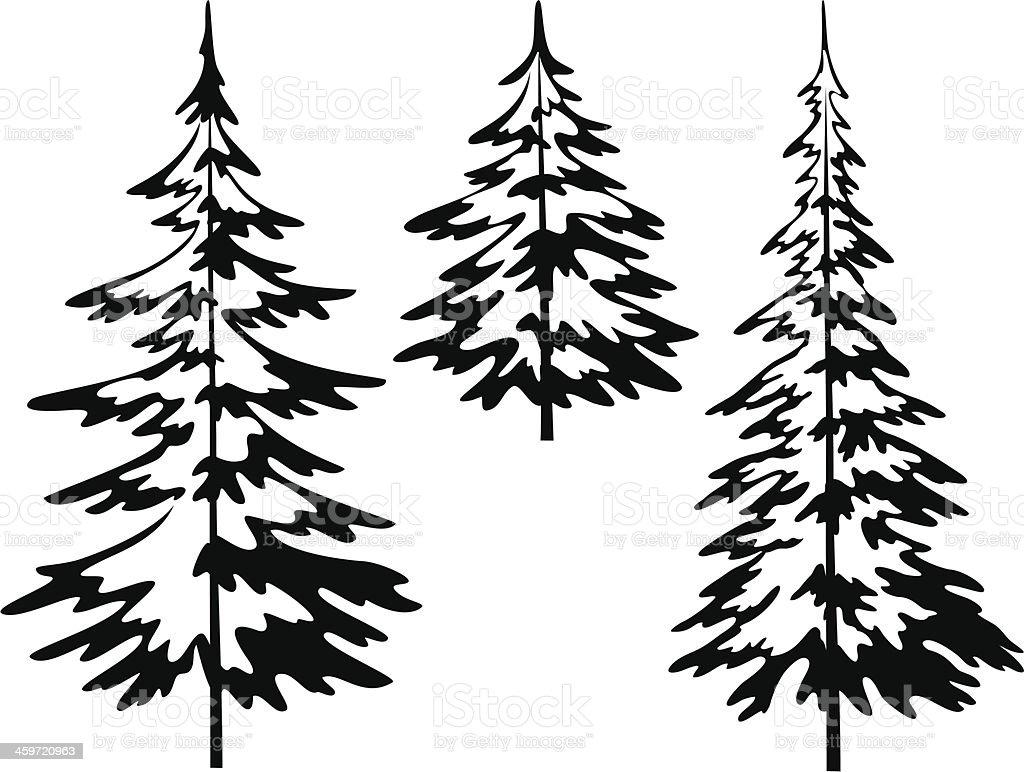 Christmas fir tree, contours vector art illustration