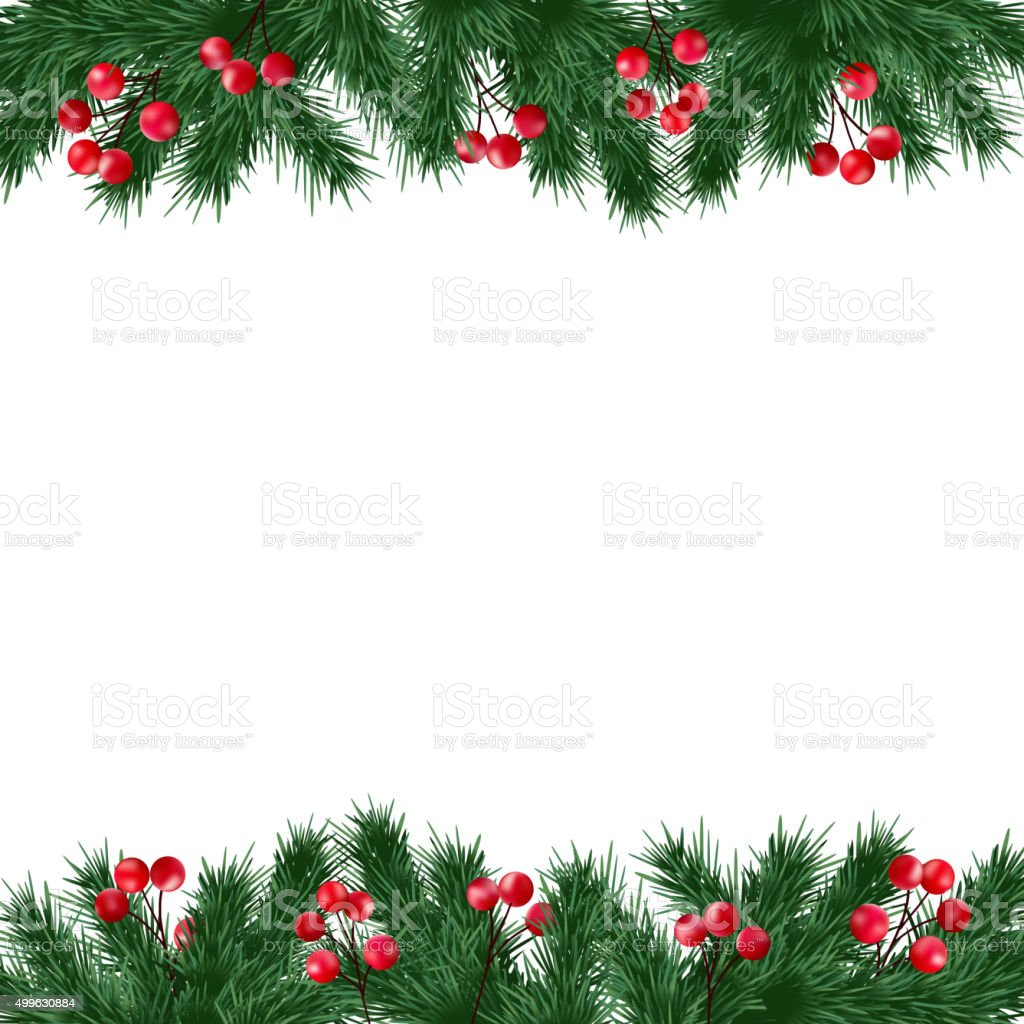 Christmas greeting card, fir tree branches and holly berries border vector art illustration