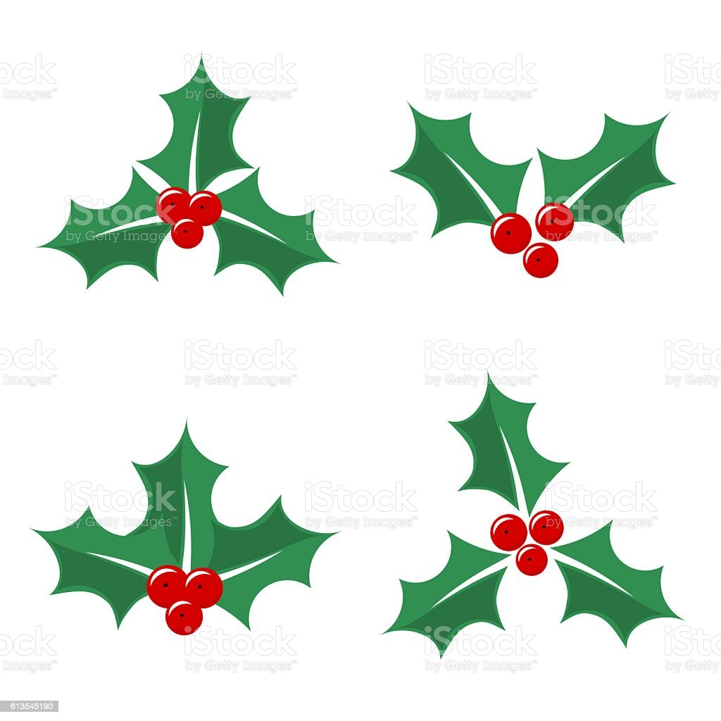 Christmas holly berry vector art illustration