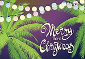 Christmas palm trees with colorful garland