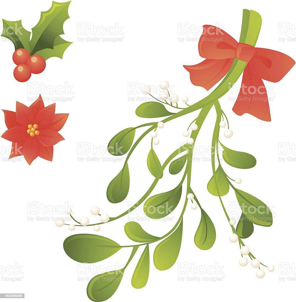 Christmas plants: Holly berries, poinsettia, mistletoe vector art illustration
