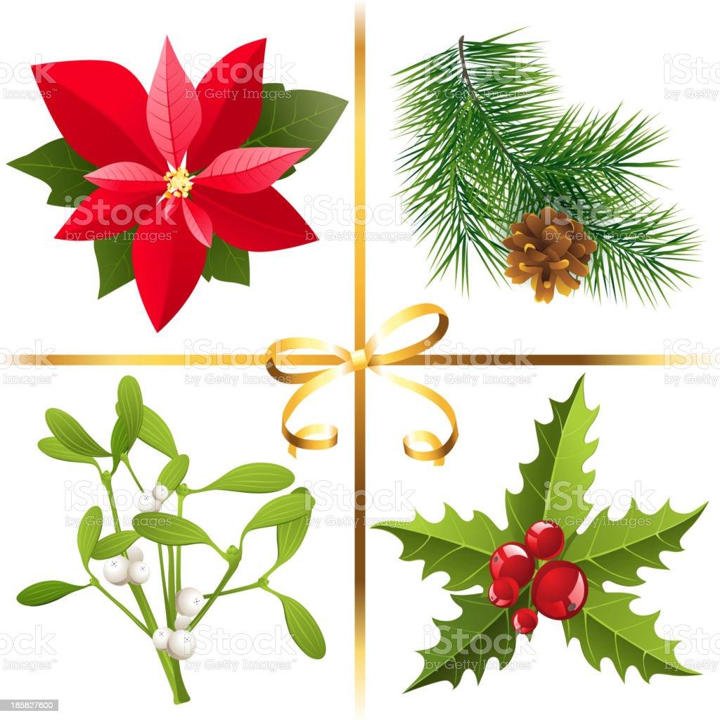 Christmas plants royalty-free stock vector art
