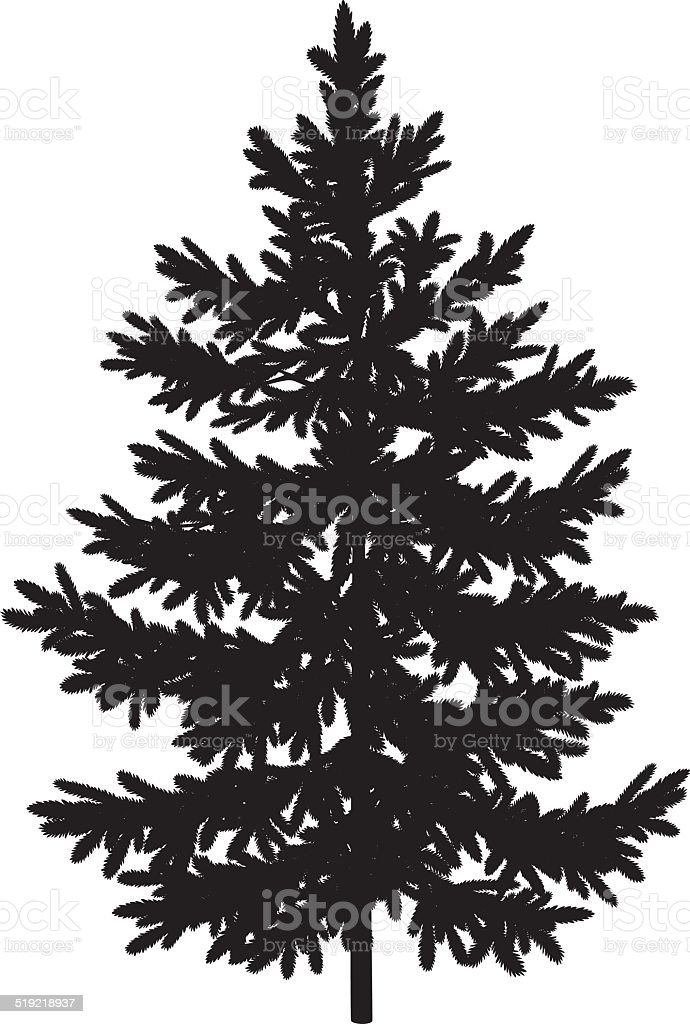 Christmas spruce fir tree silhouette vector art illustration