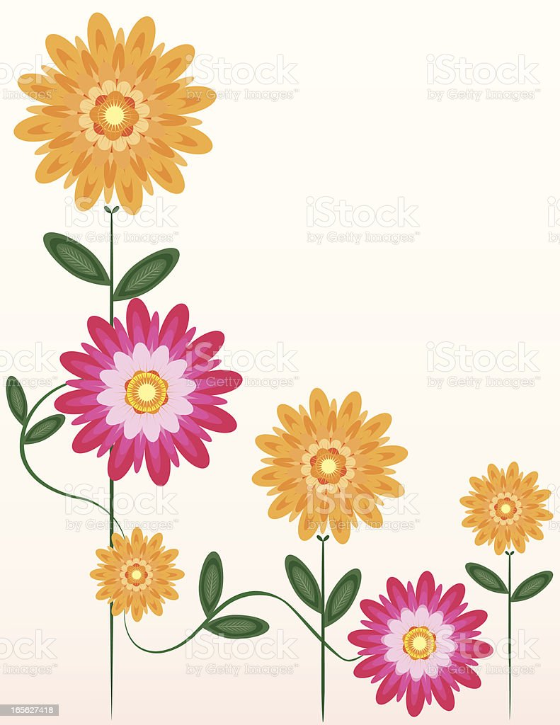 Chrysanthemums Blumen Ecke Grenze Design Lizenzfreies vektor illustration