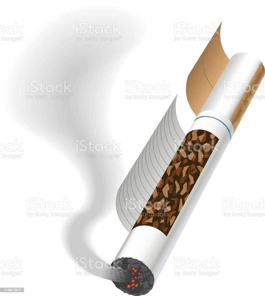 Cigarette diagram vector art illustration
