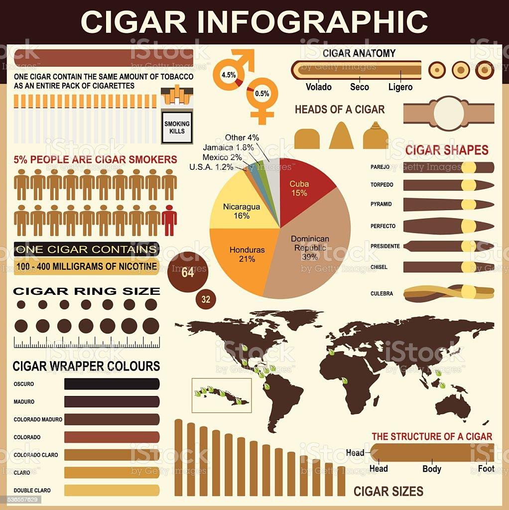 Cigars Infographic Elements vector art illustration