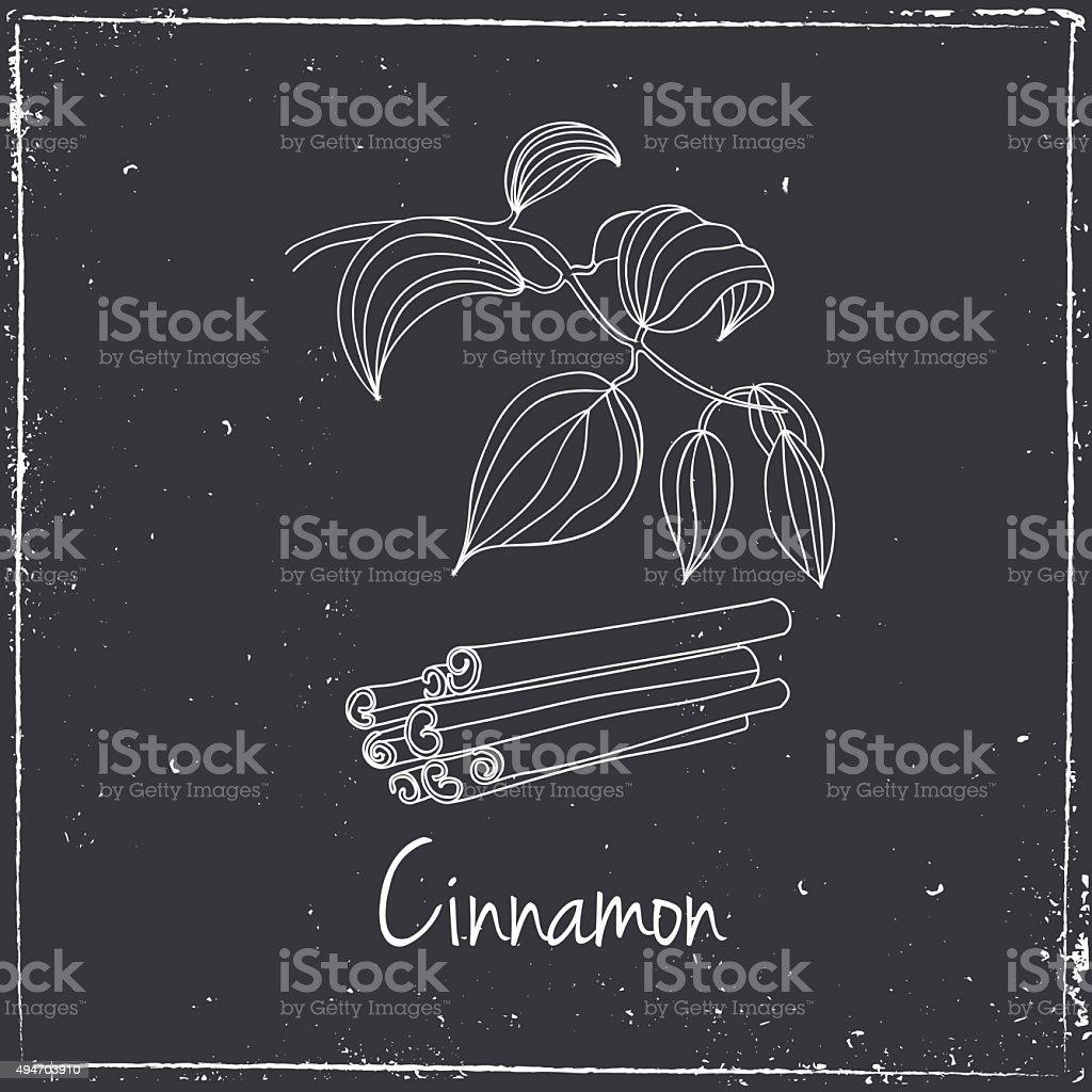Cinnamon, Herbs and Spices. vector art illustration