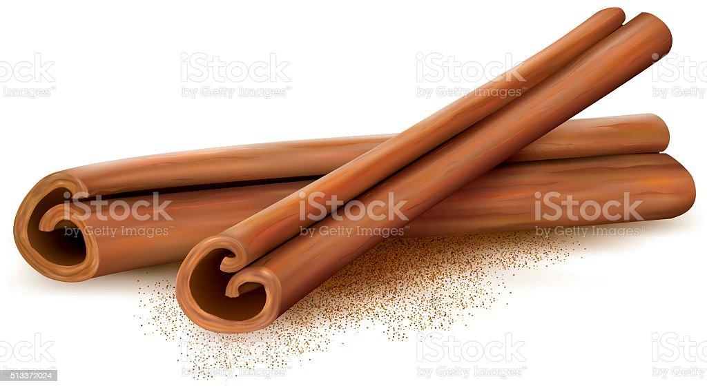 Cinnamon vector art illustration