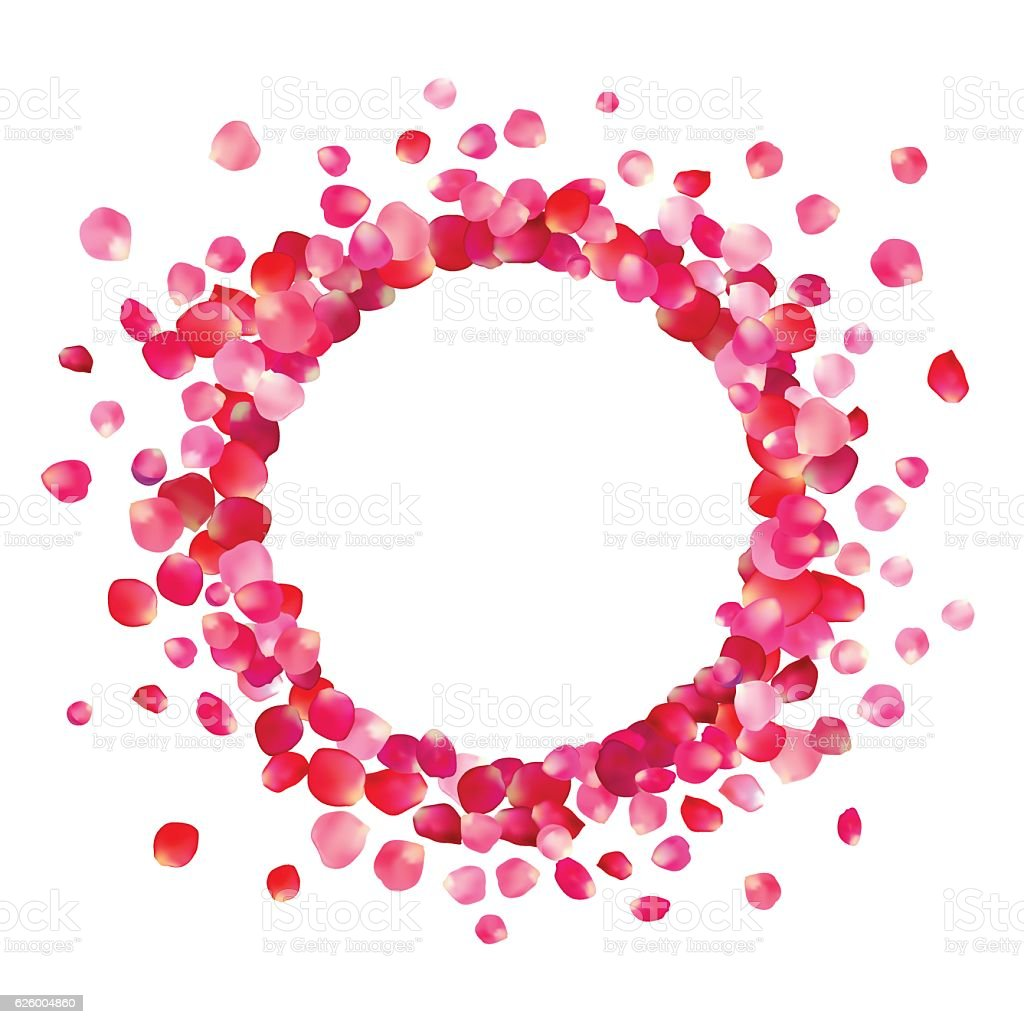 Circle frame of pink rose petals vector art illustration