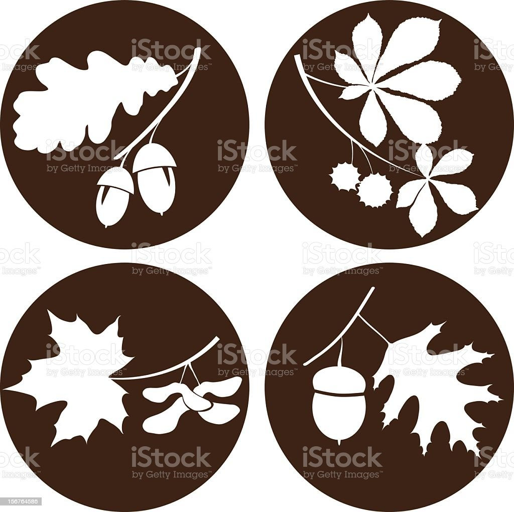 Circular images of branches and acorns vector art illustration
